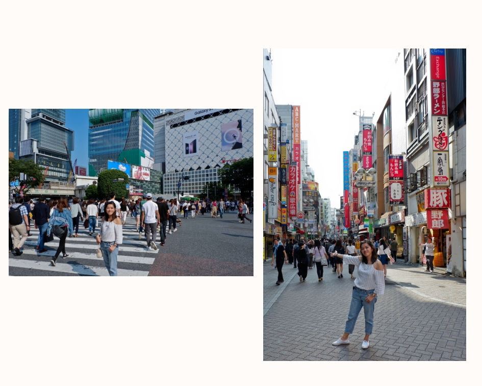 Tokyo in 30 Hours -4