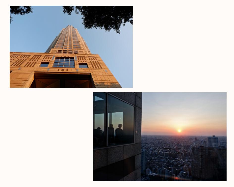 Tokyo in 30 Hours -6