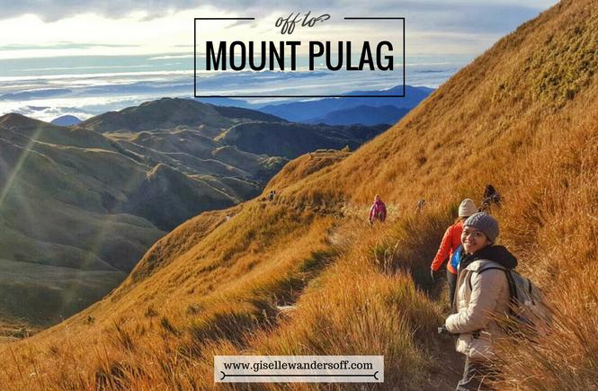 Mount Pulag | Banner